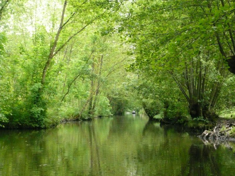les canaux embarcadère la venise verte marais poitevin