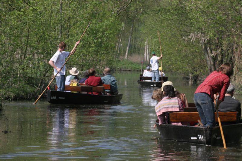 accueil des groupes embarcadère la venise verte marais poitevin